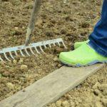 Kertészkedés kezdőknek röviden 7  egyszerű lépésben