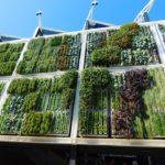 A legtrendibb házikertek, melyek egyben környezetbarátok is