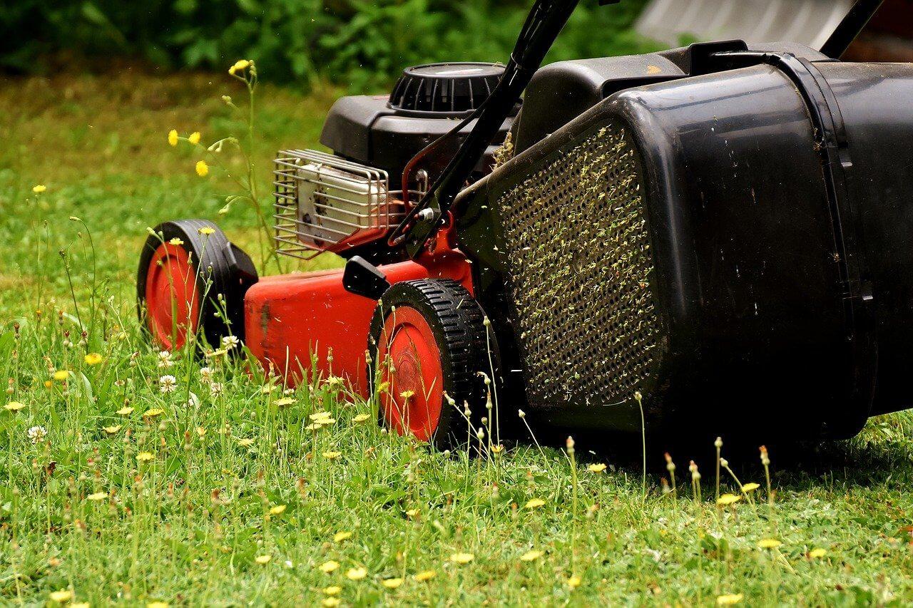 Kerti munkák májusban: Eszközök átvizsgálása