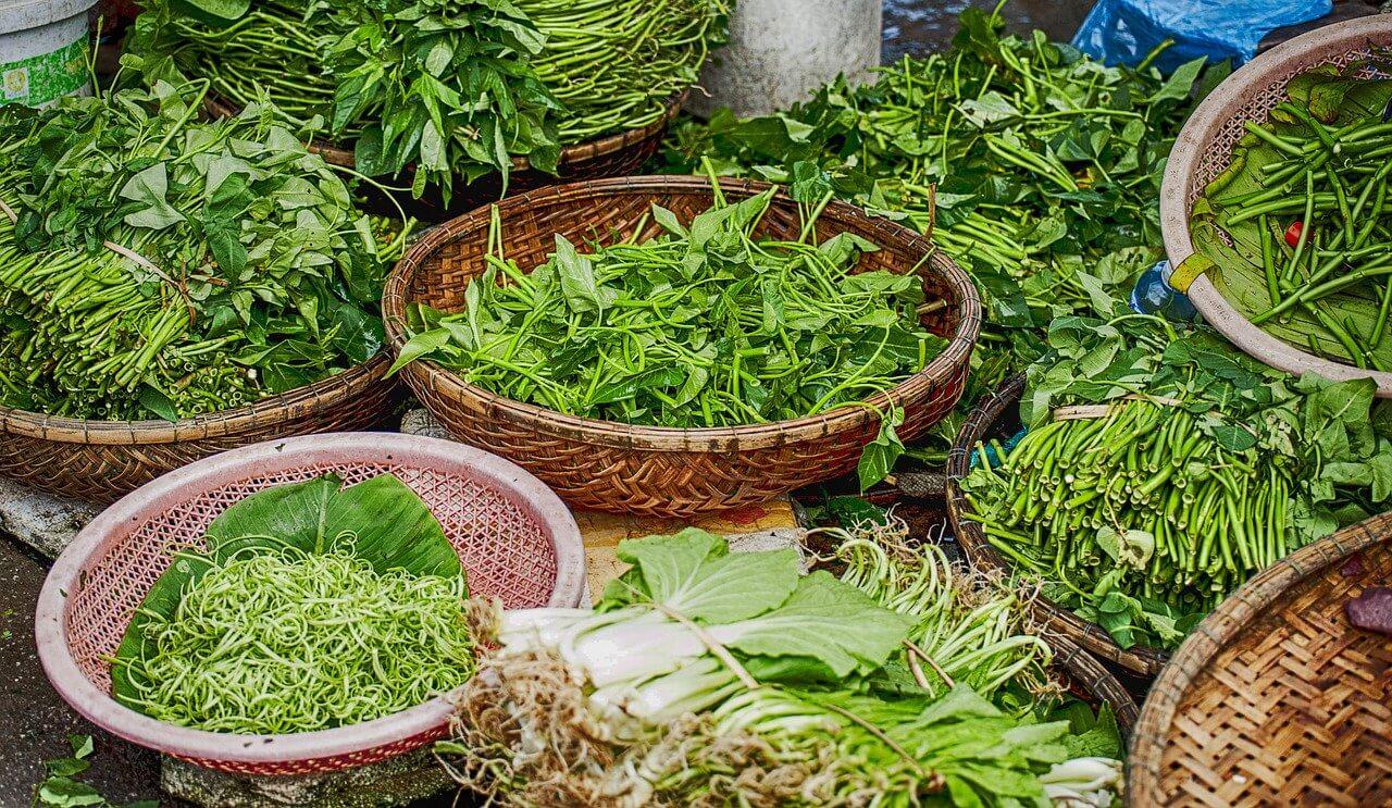 A fűszernövények fajtái