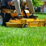 Gyep tavaszi ápolása: hogyan legyen mindig üde, zöld pázsitunk?