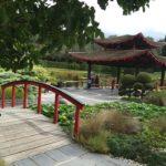 Egy kis buddhista éden – a japánkert