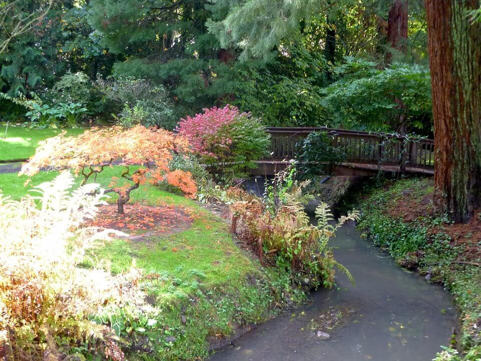 Japánkert, mindenképp természetesség!
