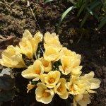 Itt a tavasz, vár a kert, kezdődhet az aktív pihenés