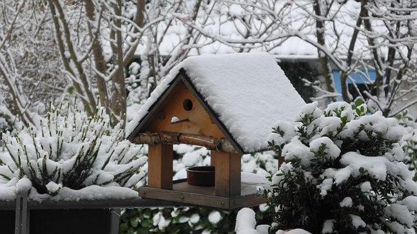 Kerti munkák télen - Madár etető