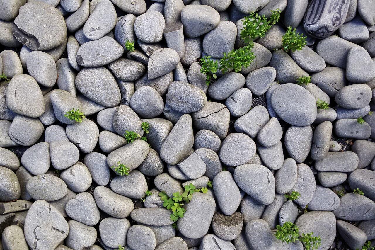 Talajtakaró - kövek